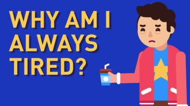 Why Am I Always Tired? Top 7 Reasons!