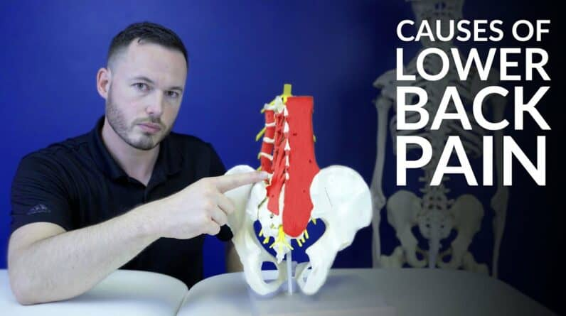 Low back pain- The most common causes of lower back pain